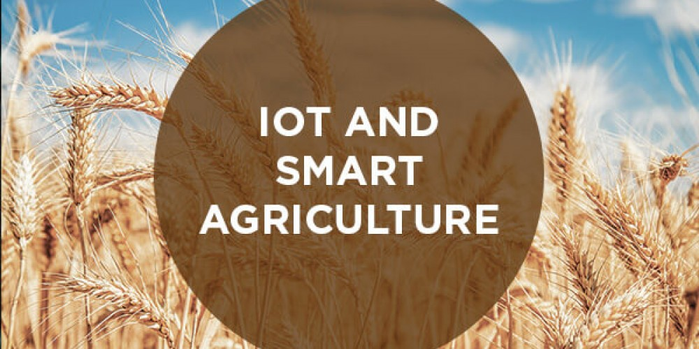 IoT Is Revolutionizing Agriculture Industry Now
