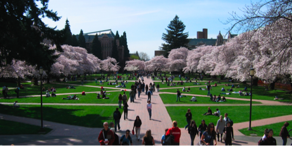 University Of Washington Faculty Study Legal, Social Complexities Of Augmented Reality